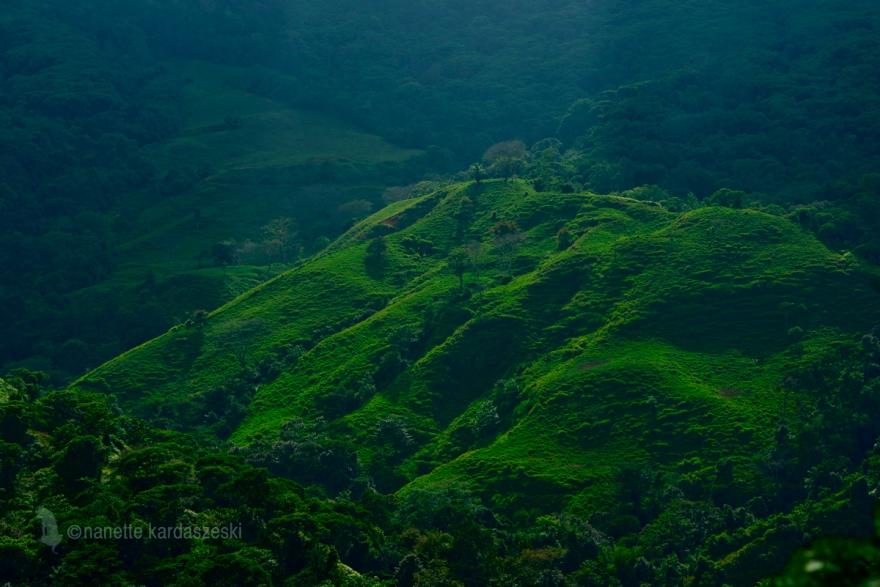 Lush green mountainside surrounding the Nauyaca waterfall.