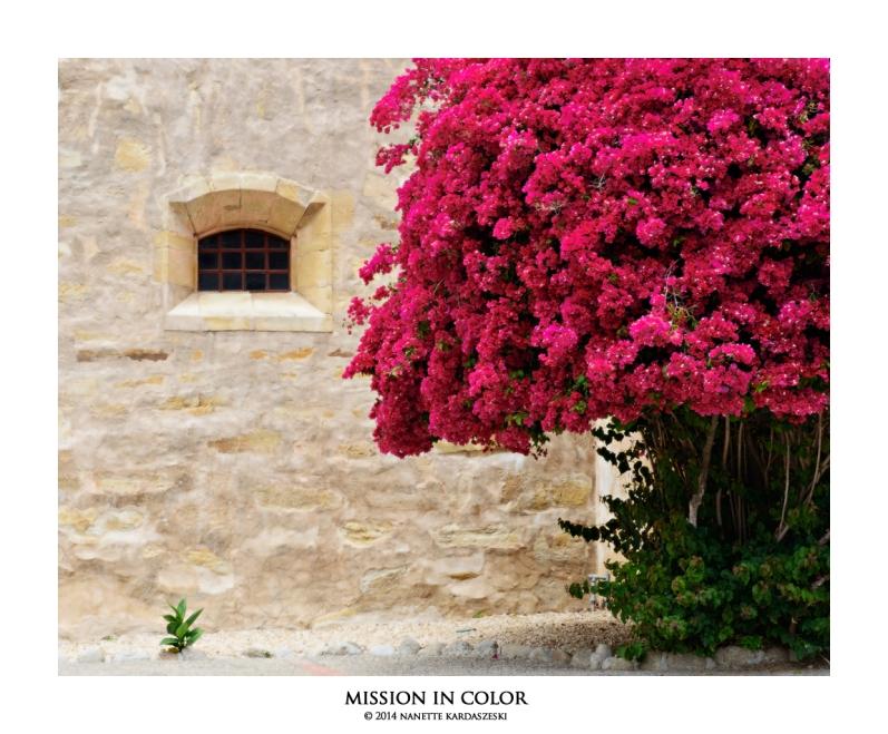 missionincolor_7035